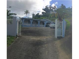 Bo. San Salvador, Caguas (a un minuto de Guavate)