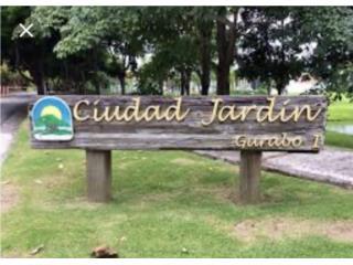 URB CIUDAD JARDIN DE GURABO