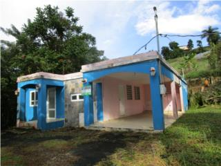 Bo Borinquen - Campo adentro y Sector Alto