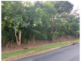 Terreno en Cerro Gordo Bayamon , $760k