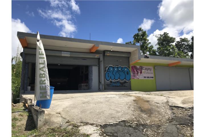 Maton Puerto Rico