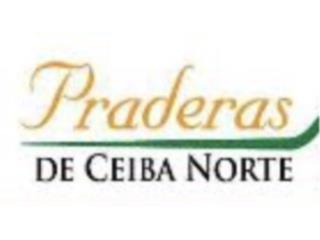 Urb. Praderas de Ceiba Norte Juncos, PR