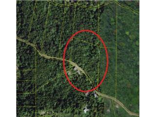 5 Cuerdas en Colinas de Cubuy cerca Yunque