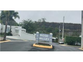Rose valley, haz tu oferta, 3H-2B