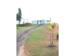 Casa de campo  8 cuerdas Bo Guayabota Yabucoa