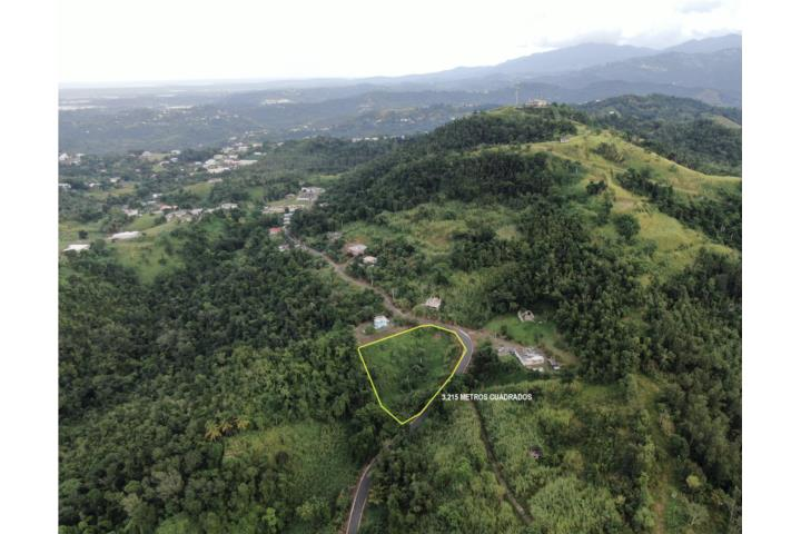 Santa Cruz Puerto Rico