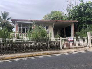 Casa y local Carr 466 Guerrero
