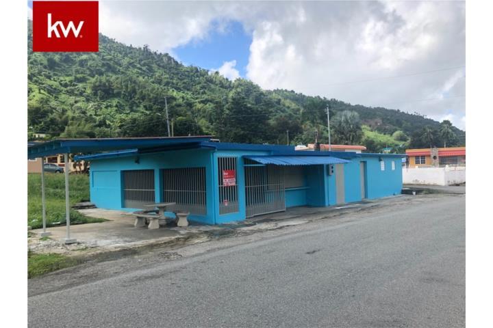 Calabazas Puerto Rico