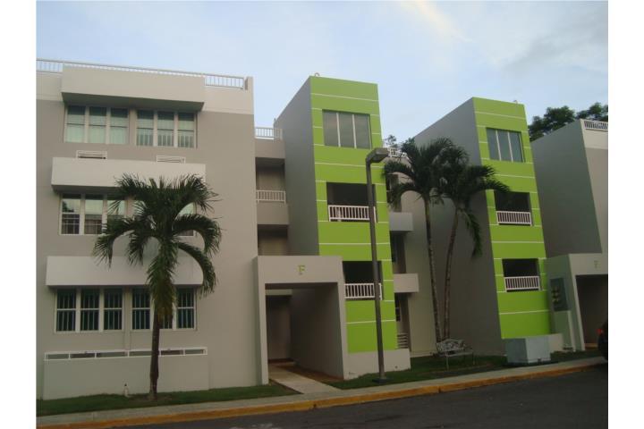 Monte Verde Puerto Rico