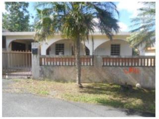 Barrio certeneja Opcion $500