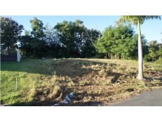 Bo. Guayabo, Sector Casualidad Aguada