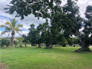 CABO ROJO, BO. GUANAJIBO, PUERTO RICO