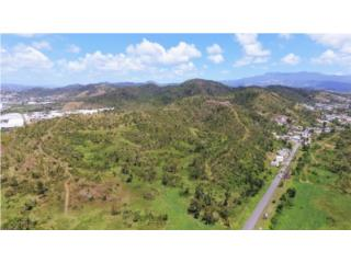 500+ Acre Site in Humacao for Development