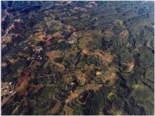 Hacienda Jauca, 899 cuerdas.