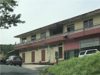 BO. PALOS BLANCOS, CARR 803 KM 3.9
