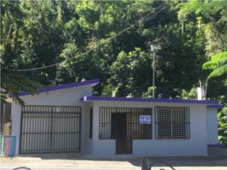 Hato Puerto Rico