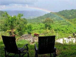 Stunning Cayey Lot, OWNER FINANCING AVAILABLE
