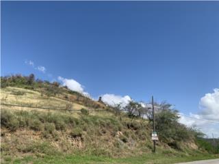 Finca Lajas