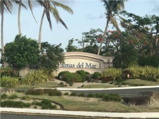 Palmas Del Mar* Varias y varios precios!