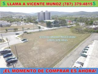 CARR 128 - LOTE COMERCIAL -