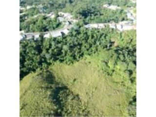 Land for Developing Project in Mayaguez