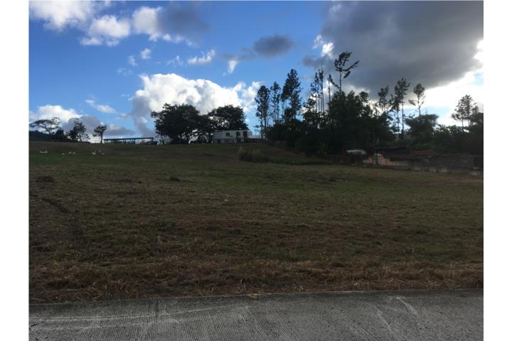 Estancias De Beatriz Puerto Rico