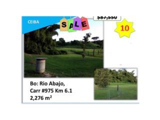 Río Abajo Carr 975 Km 6.1