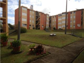 Inter Americana Garden,3h-1B,Nuevo Precio,Garden