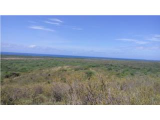 718 acres with a beautiful Ocean View