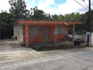 Casa, Bo. Guaraguao, Guaynabo