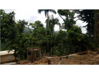 View lot in Sabana, Minutes to Luquillo beach