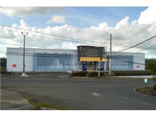 Antiguo Gatsby Naranjito 16,292 SF-63 Parking