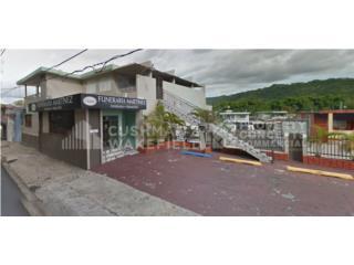 Edificio Comercial en Mayaguez con 10,084 SF