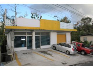 Carr.#1, Bo.Rio Cañas, 393mts, 2,000p/c aprox