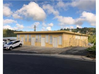 Two-story Commercial Property Cidra FOR SALE