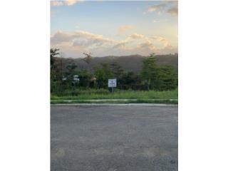 Repo-Urb. Manatuabón, cont. de acceso, Manatí