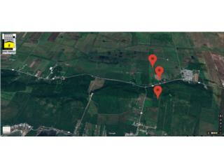 721.66 Acres Agricultural Farms Lajas Valley