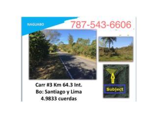 Bo. Santiago y Lima Carr 3 km 65.3 interior