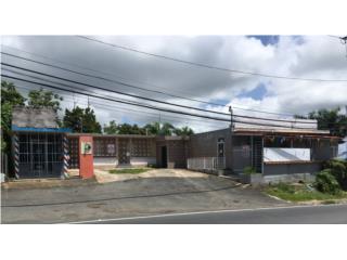Comercial, Bo. Lomas, Naranjito-OPCIONADO