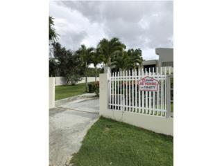 Bo. Dominguito, Arecibo