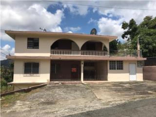 Bo. Rio Cañas Sector La Barra, Caguas