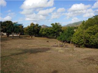 Haciendas del Cayabo, entrada a Collores