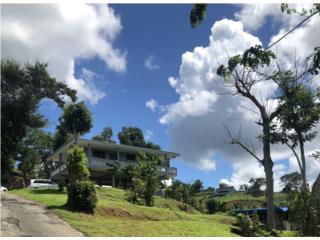 Bo. Guaraguao Sector Villa Isleña