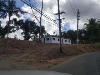 198  Barrio Ceiba Norte