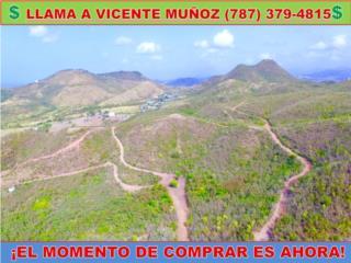 CARR 154 KM 2.4 - * 48 CUERDAS DE TERRENO *