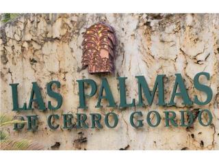 Urb. Las Parmas de Cerro Gordo 4h/2.5b