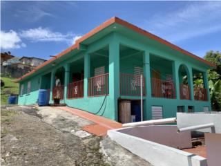 Bo. Ceiba Sur, Juncos