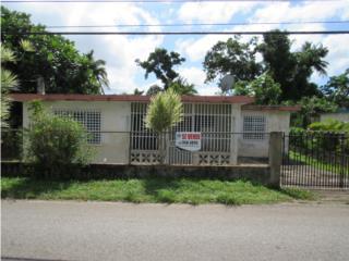 Dominguito