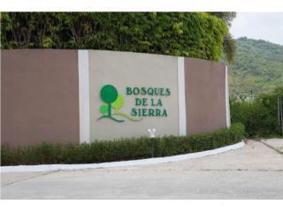 BOSQUE DE LA SIERRA//VARIAS REPO//787-460-4696