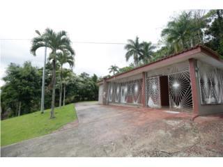 Barrio Caguanas Utuado 3/2.5